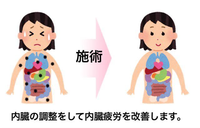 骨盤のゆがみを改善するために内臓の調整をします。