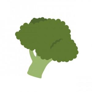 水戸の整体 免疫力を高める食べ物の1つ、ブロッコリー